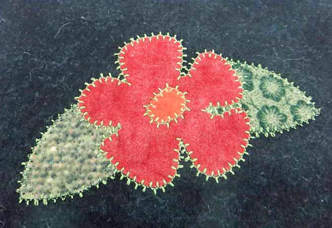 The finished applique with stitch #72 from the utility stitch panel on the NQ900.