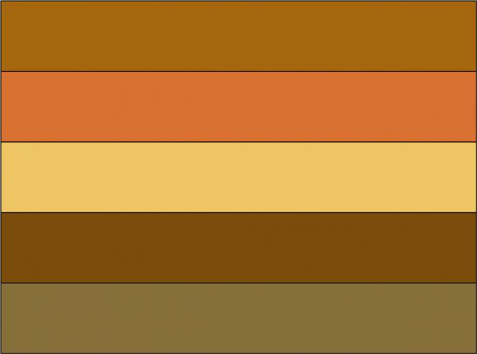"""Strip set with 5 – 2"""" x 13½"""" strips"""