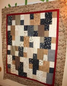 The finished quilt top--love the color and the directional houses.