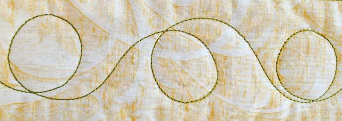 Loop de loop machine quilted border design