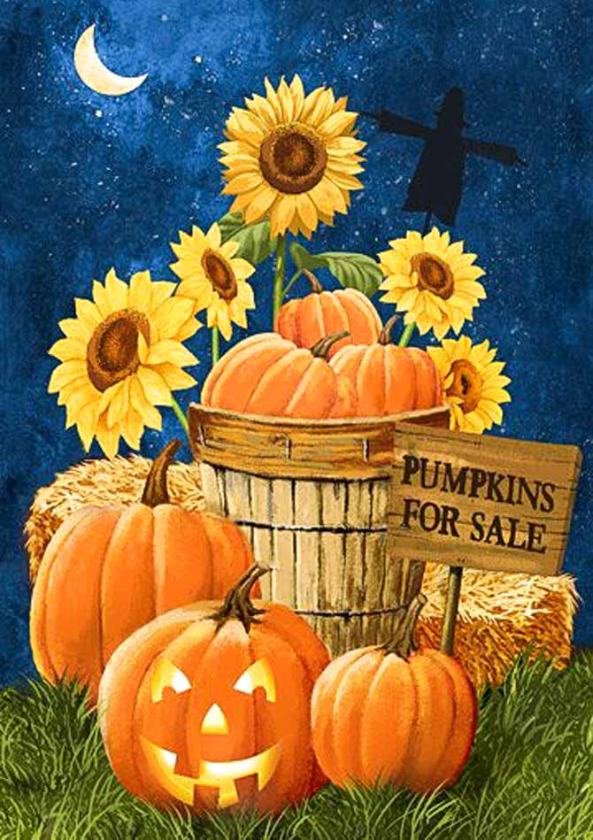 Pumpkins for sale panel from Northcott